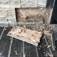panel with termite damage